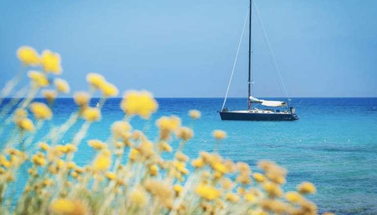 Investissement locatif saisonnier en Corse: on vous explique tout! 🏖