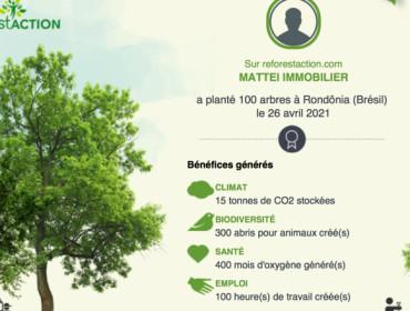 Mattei Immobilier, une agence éco-responsable 🌿