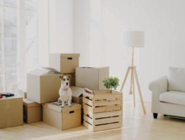 Comment bien organiser son déménagement ? 😌